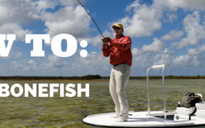 FIGHT A BONEFISH