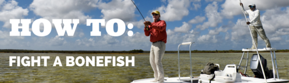 fighting a bonefish
