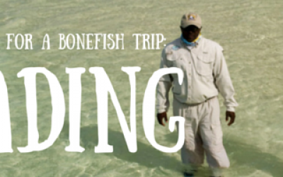 bonefishing wading