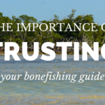 trusting your guide