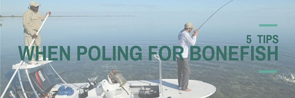 Poling for bonefish