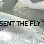 presenting the fly to a permit