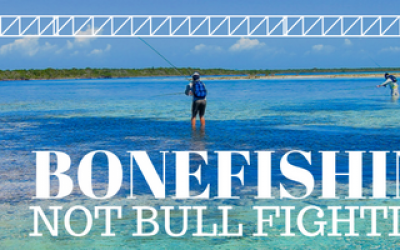 bonefishing not bull fighting