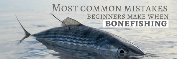 Most Common Mistakes Beginners Make When Bonefishing ...