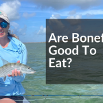 Are Bonefish Good To Eat